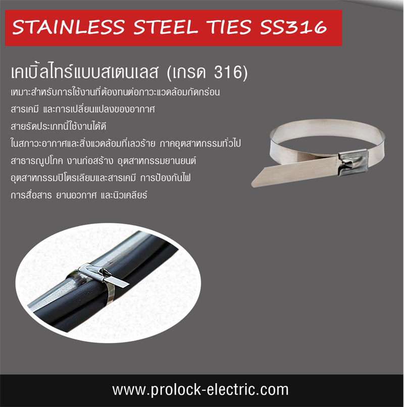 STAINLESS STEEL CABLE TIE 1